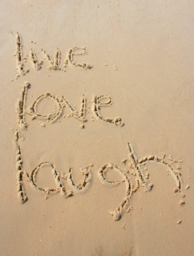Leben im Sand lizenzfreie stockfotos