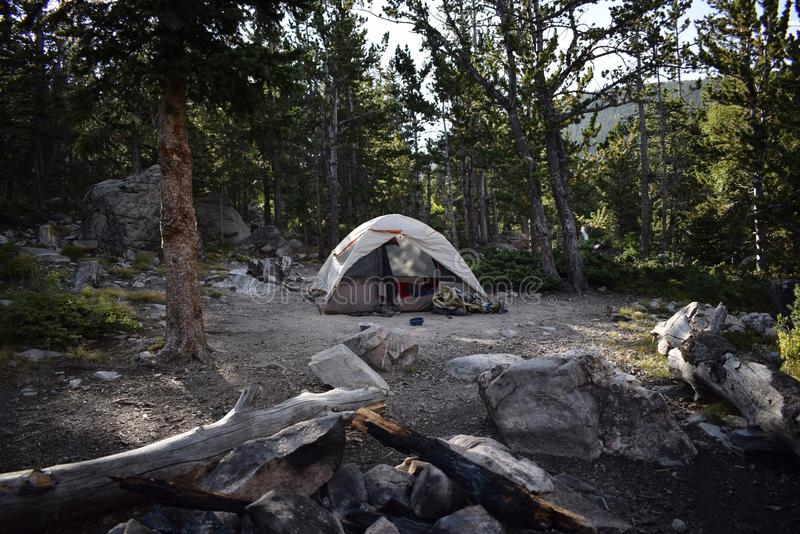 Leben im Wald, kampierende Art lizenzfreie stockfotografie