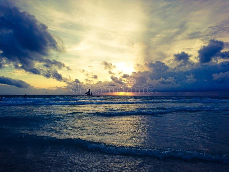 Leben in Meer lizenzfreies stockfoto