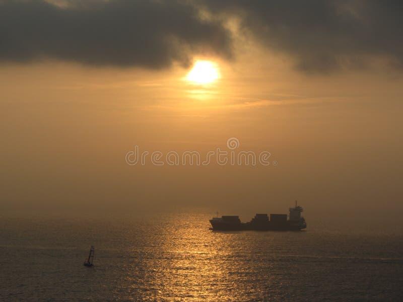 Leben in Meer lizenzfreie stockfotografie