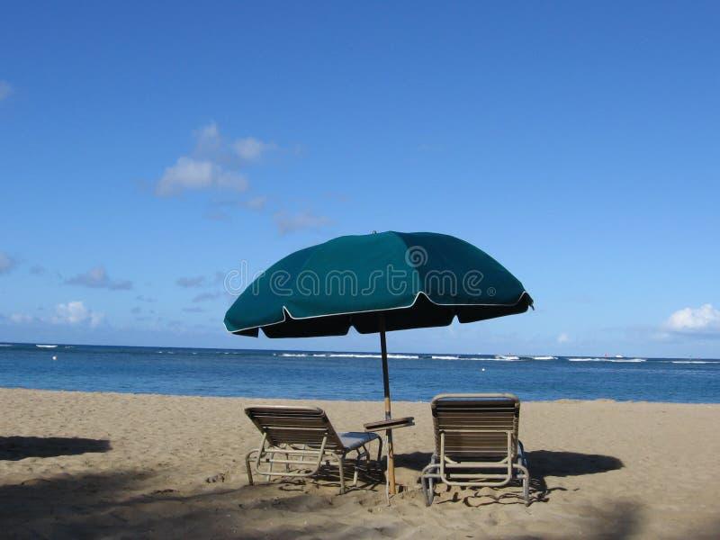 Leben am Strand lizenzfreies stockfoto