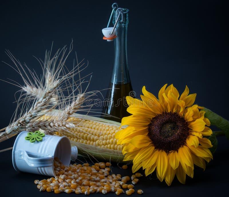 Leben von Getreide lizenzfreie stockfotografie