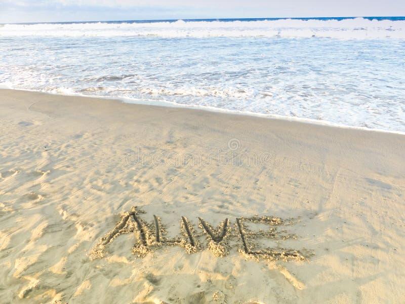 'Lebendiger' abgehobener Betrag auf Sandy Beach With Ocean Waves, inspirierend Sand-Wort stockbild