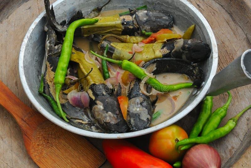 Lebensmittel von den Philippinen, Ginataang Bunog (Fried Young Mudfish) stockfoto