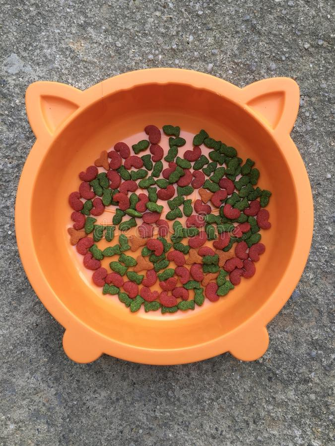 Lebensmittel von Katzen lizenzfreie stockfotografie