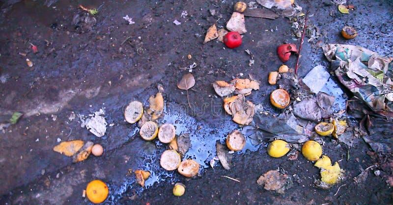 Lebensmittelabfälle - fauler Obst- und Gemüse Abfall in einem Müllcontainer lizenzfreie stockbilder