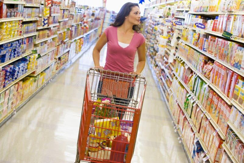 Lebensmittelgeschäfteinkaufen der jungen Frau lizenzfreie stockfotografie