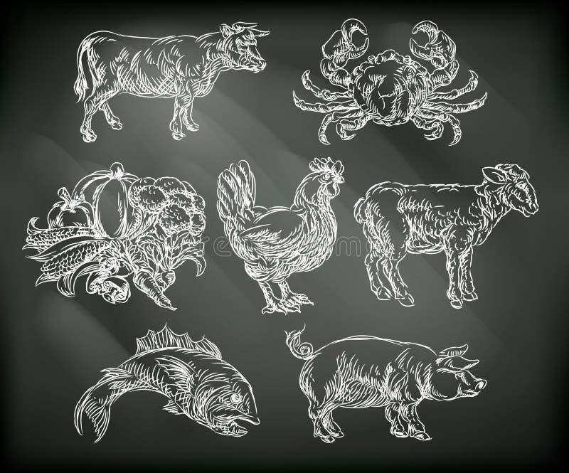 Lebensmittelgruppe-Kreide-Hand gezeichnete Tierikonen lizenzfreie abbildung