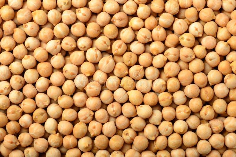 Lebensmittelhintergrund von rohen Kichererbsen, Draufsicht lizenzfreie stockfotos
