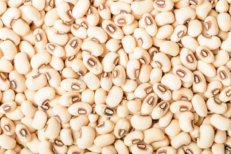 Lebensmittelhintergrund von rohes Schwarzes gemusterten Erbsen stockfotos