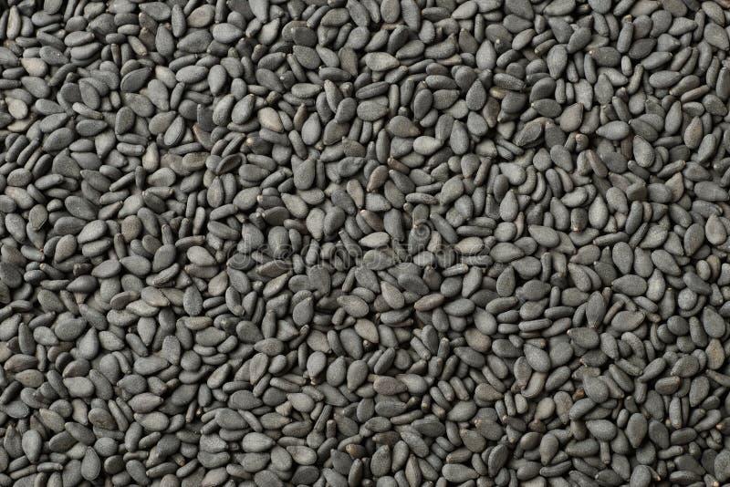 Lebensmittelhintergrund von schwarzen Samen des indischen Sesams, Draufsicht stockfoto
