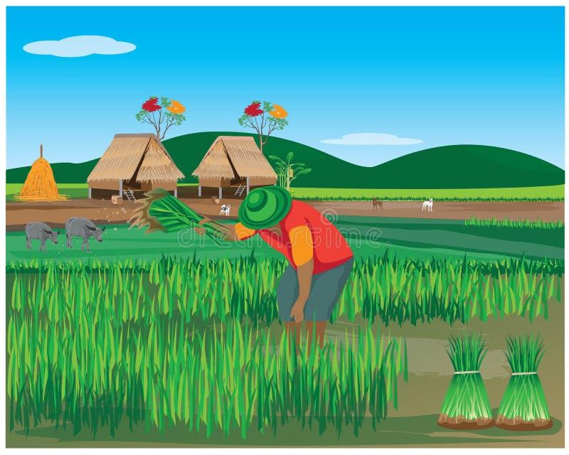 Lebensstil des Landwirts stock abbildung