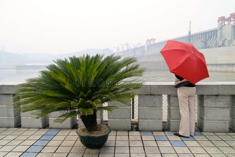 Lebhaftes Mädchen mit dem Regenschirmaufpassen stockfoto