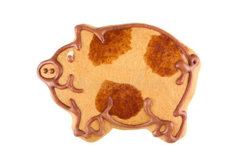 Lebkuchen-Schwein stockfotos