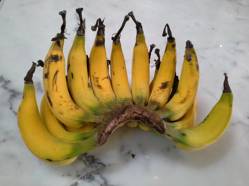 Lebmuernang banan, Hadyai, Songkhla, Thailand arkivbilder