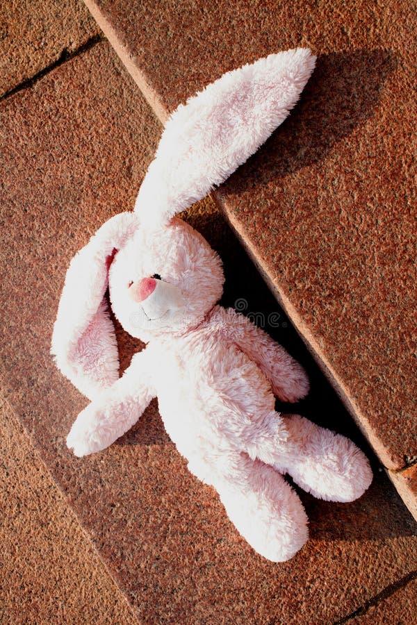 Lebre cor-de-rosa velha do brinquedo do luxuoso foto de stock royalty free