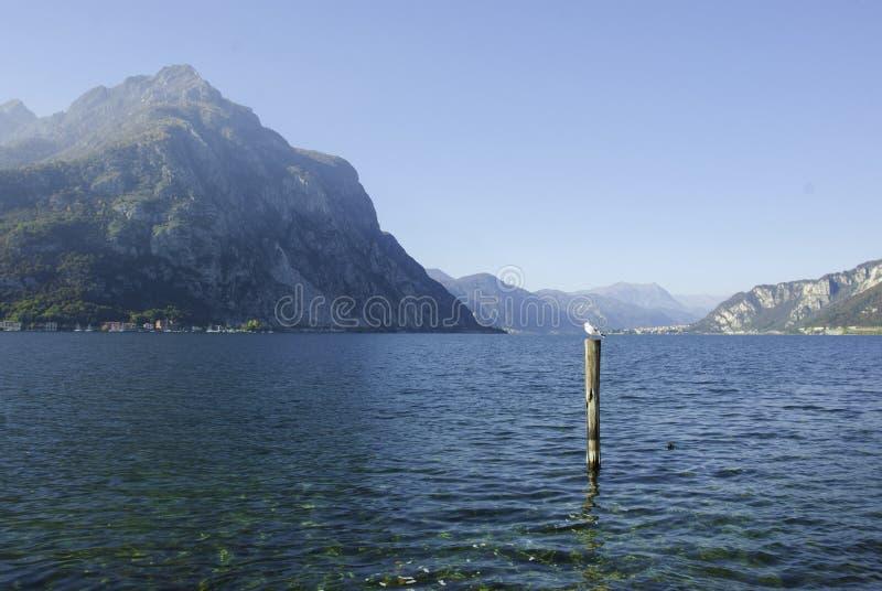 Lecco Lake royalty free stock photo