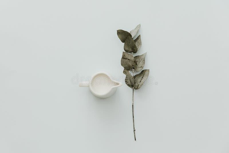Leche fresca blanca en tarro Endecha plana mínima con el eucalipto fotografía de archivo