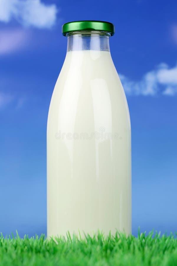 Leche fresca en una botella en prado verde fotos de archivo