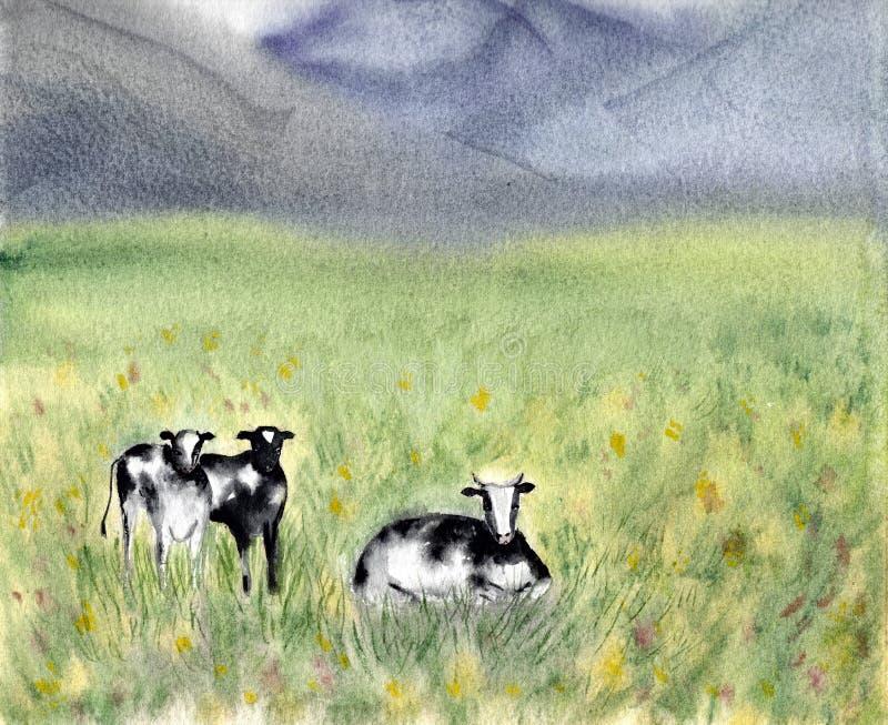 Lechería que pasta vacas blancos y negros del Holstein-frisón en un campo herboso Escena rural del verano Fondo alpestre watercol ilustración del vector