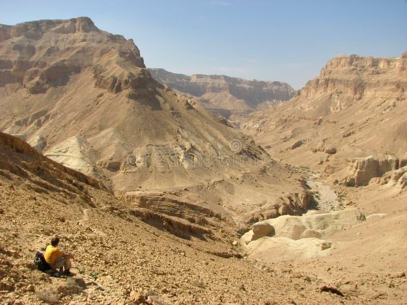 Lecho de un río seco Hemar. Desierto del Néguev. imagenes de archivo