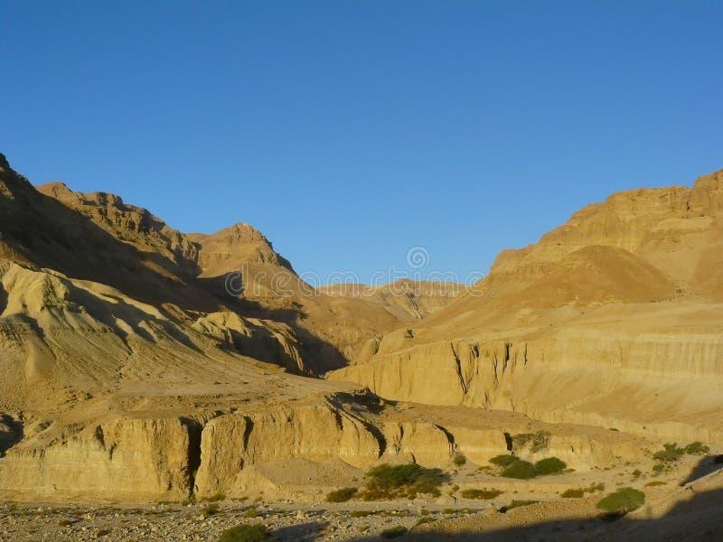 Lecho de un río seco Zeelim. Desierto de Judean imágenes de archivo libres de regalías