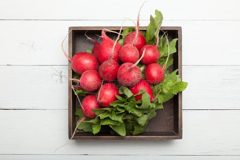 Lechuga del rábano de la cosecha, agricultura, manojo rojo en caja imágenes de archivo libres de regalías