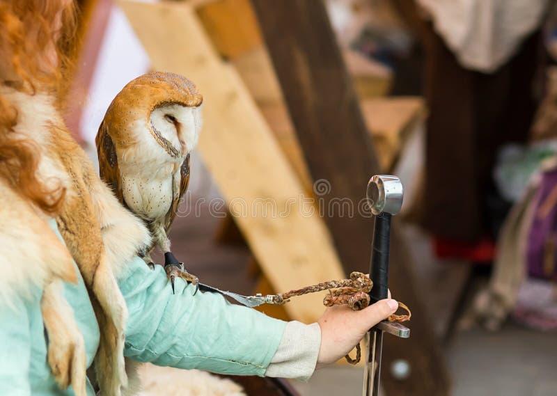 Lechuza común que se sienta en el brazo Muchacha pelirroja con un Tyto alba en la mano que sostiene la espada fotos de archivo libres de regalías