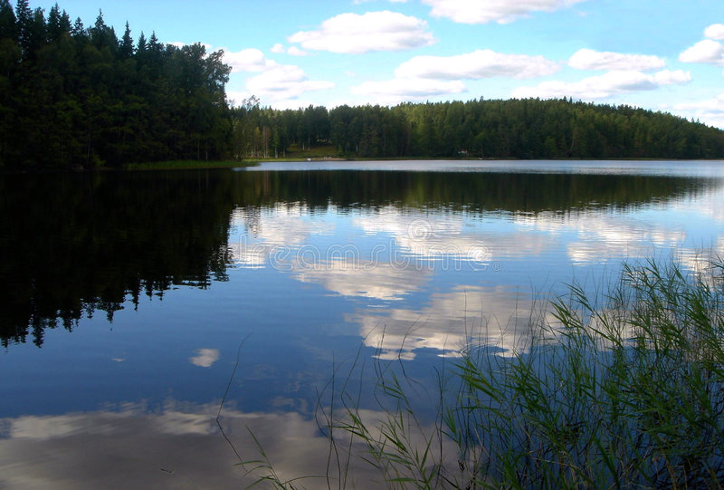 leci nad jeziorem drewna zdjęcia stock