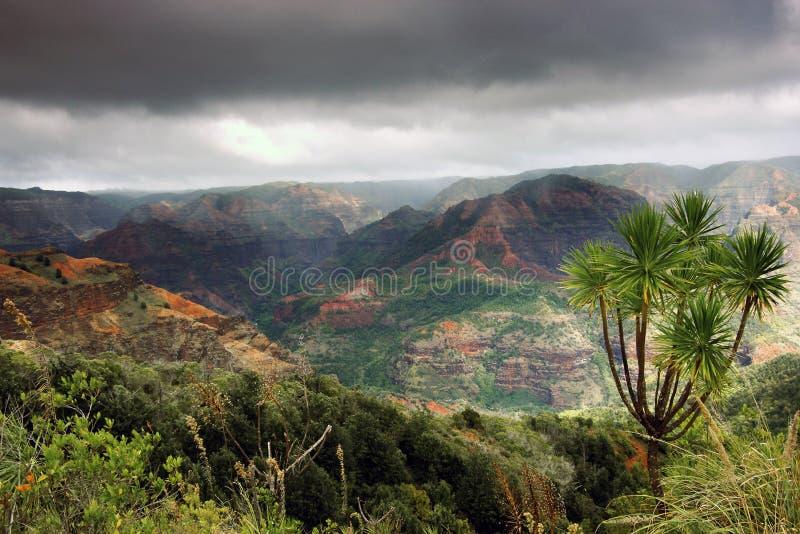 leci w kanionie waimea krajobrazu obrazy stock