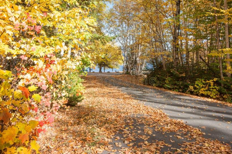 Lecteur scénique d'automne images stock