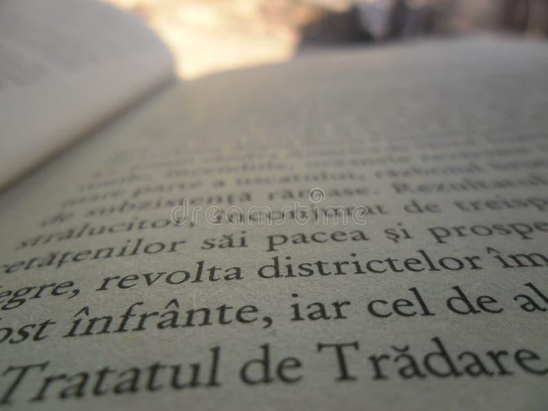 Lectura de un libro fotografía de archivo libre de regalías