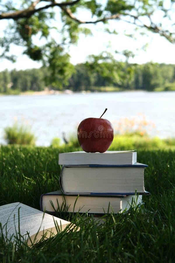 Lectura del verano foto de archivo libre de regalías