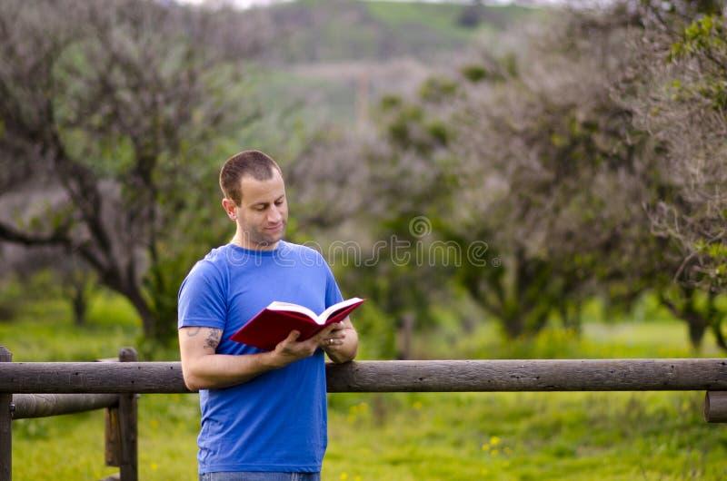 Lecture dehors en nature photographie stock