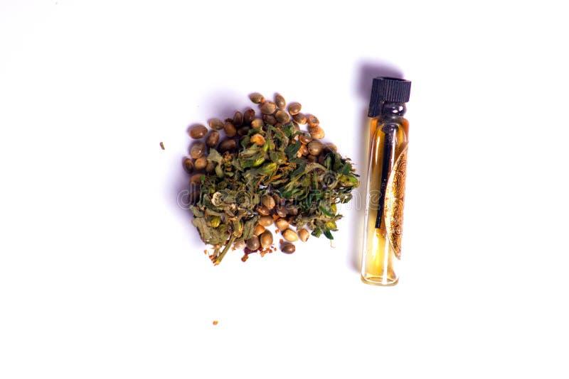Lecznicze marihuany z ekstraktem oliwią w butelce zdjęcie royalty free