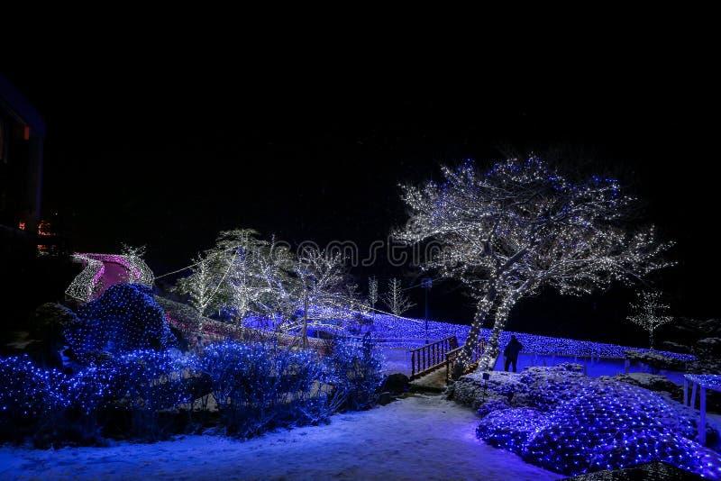 LED在洞爷湖的光演示 免版税库存照片