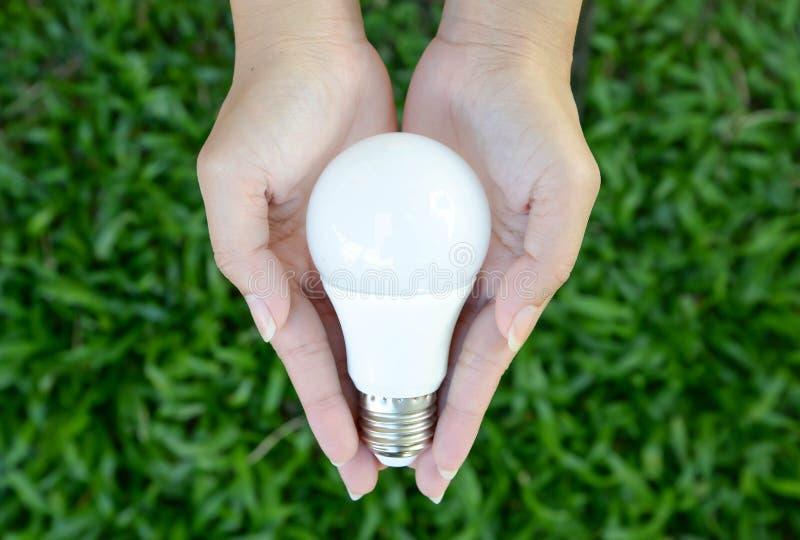 LED电灯泡-在我们的控制的能量照明设备 图库摄影