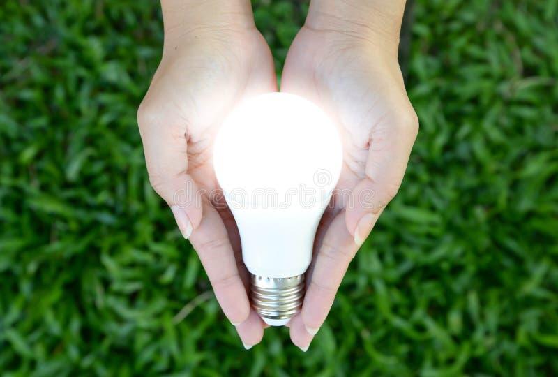 LED电灯泡-照明设备在我们的手上 库存图片