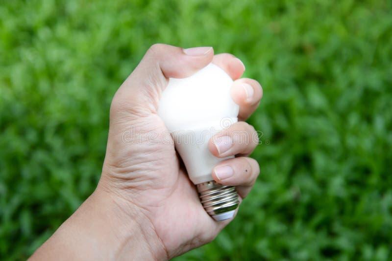 LED电灯泡-能量在我们的有照明设备的手上 库存照片