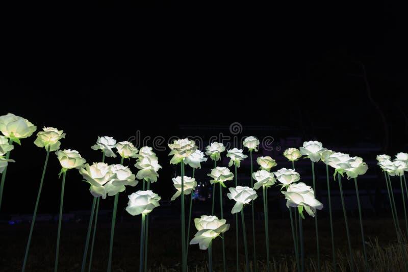 LED花园在晚上 免版税库存照片