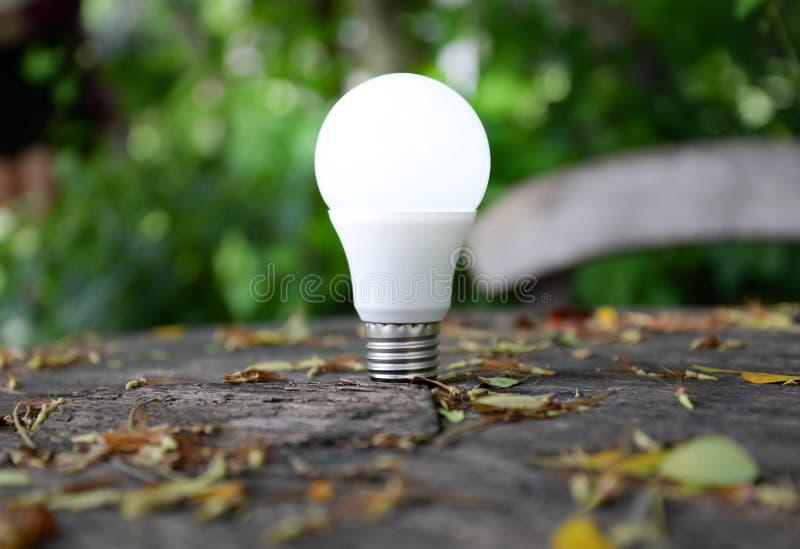 LED Bulb with lighting stock photo