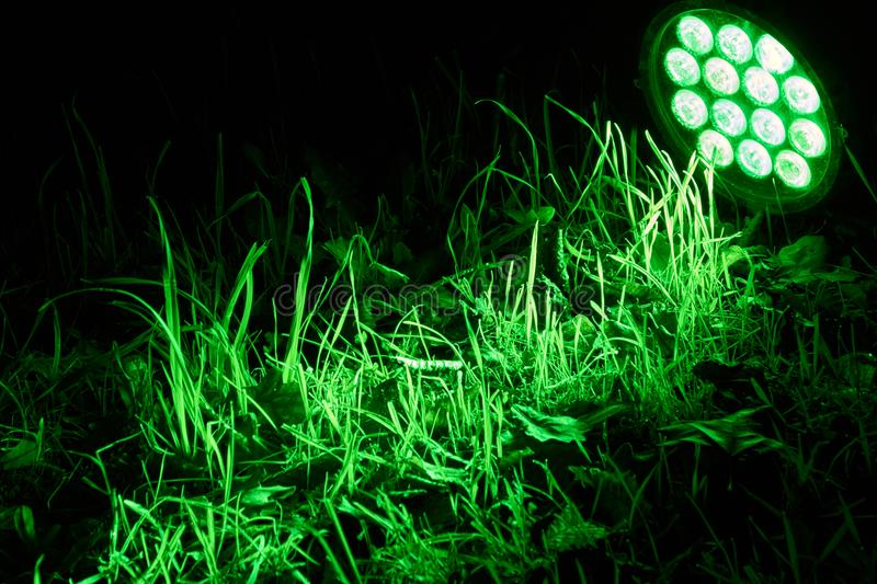 LED lamp. A bright green LED lamp lights up a meadow stock photography