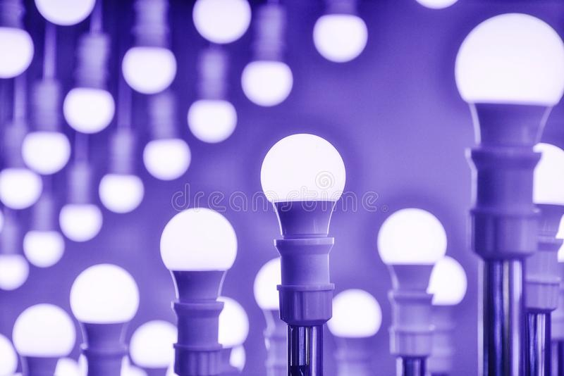 Led Lamp bulbs stock image