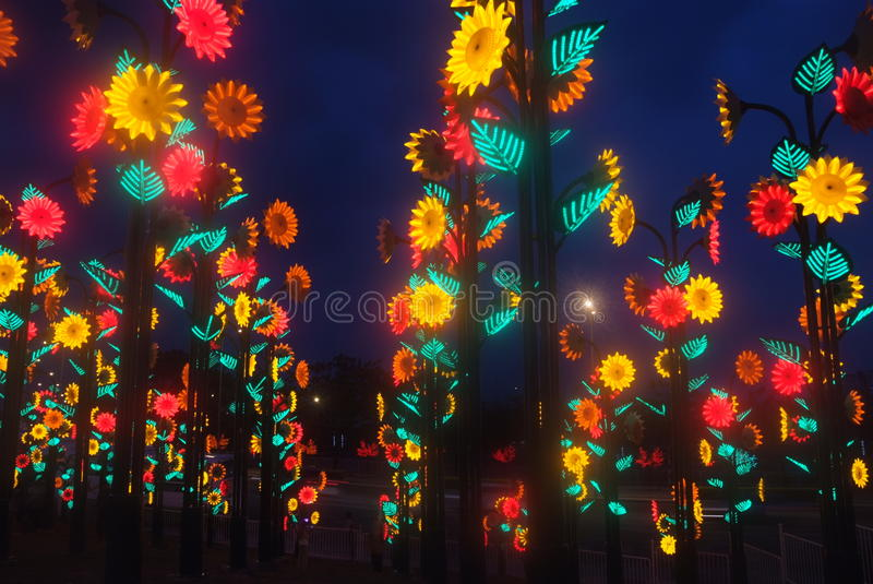 Download Led Light Festival stock photo. Image of plant, carnival - 36864998