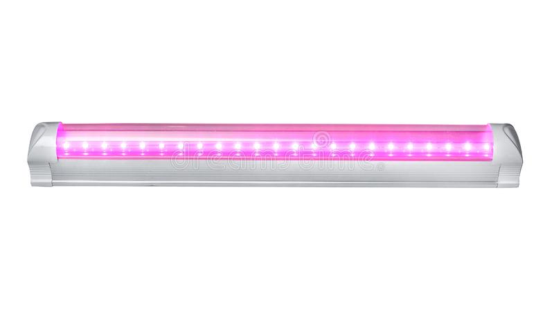 Led plant growth Light tube stock images