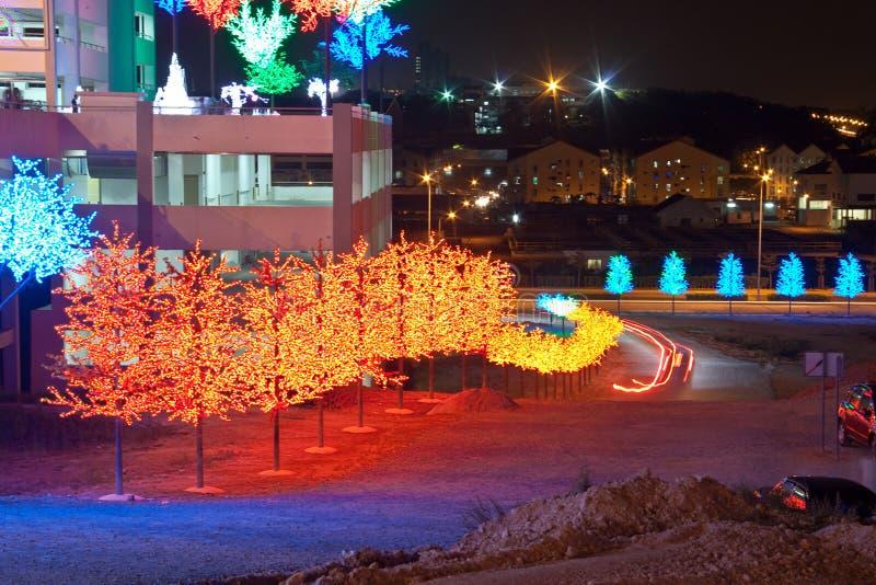 LED Tree along roadside royalty free stock photos