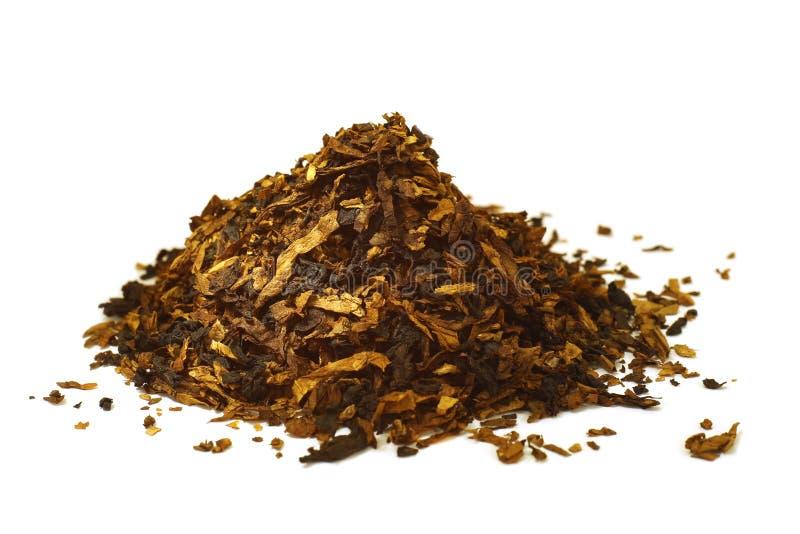 Leda i rör tobak royaltyfri foto