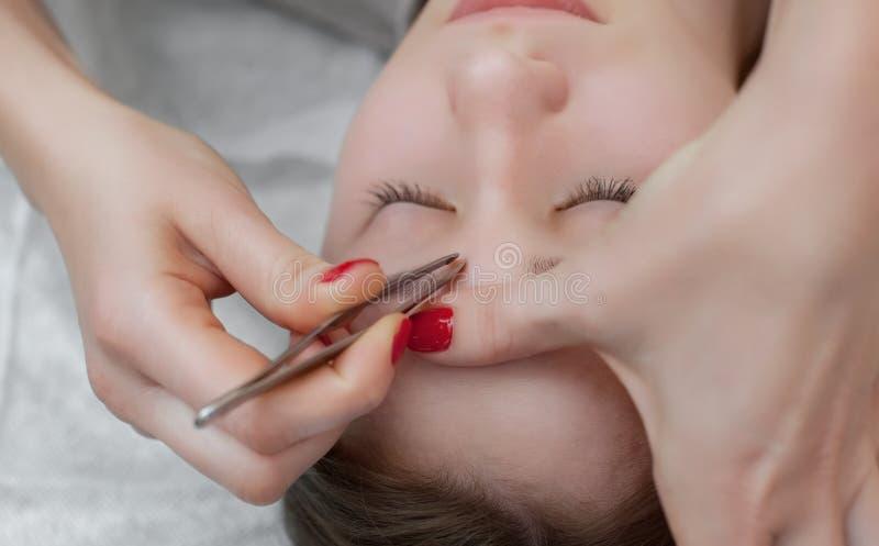 Ledar- makeup korrigerar och ger form för att dra ut med kirurgisk tång som målas föregående med hennaögonbryn royaltyfria bilder