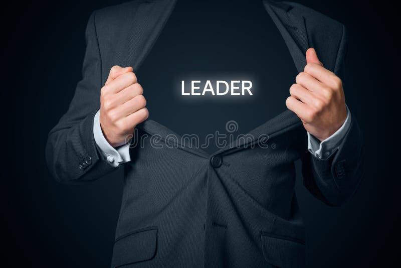 Ledare och vd royaltyfria bilder