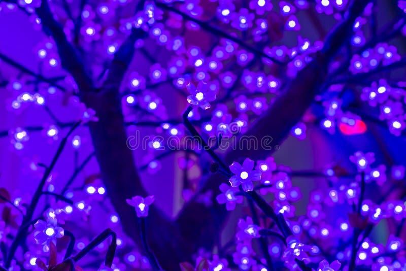 Ledd ljus sakura konstgjord blomma på träd på natten arkivfoto